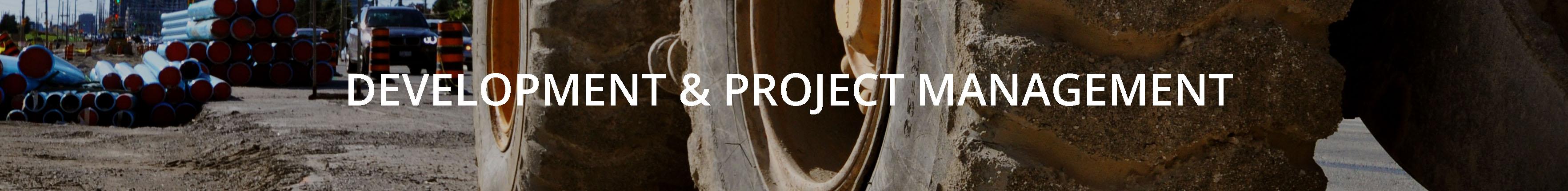 development management project management