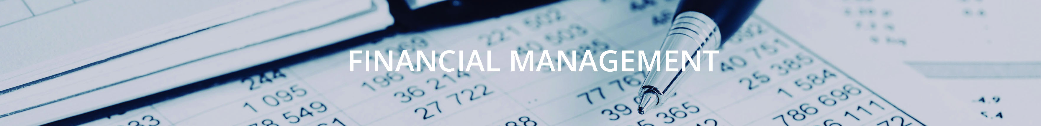financial management development project