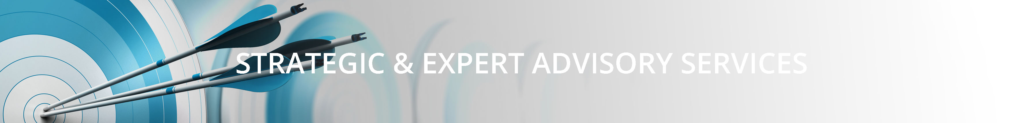 Strategic Expert Advice Services